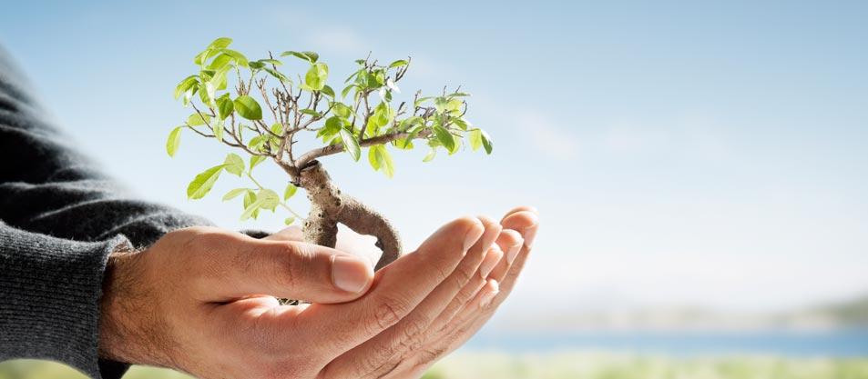 Fondul de mediu - De ce este important